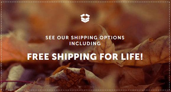 Canada Pharmacy Free Shipping